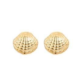 iXXXi oorknopjes, shell goud