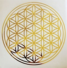 Flower of Life, sticker 18 cm doorsnee
