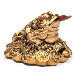 Rijkdom Kikker goudkleurig