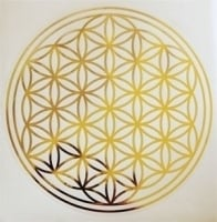 Flower of Life stickerset (niet krasvast)
