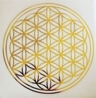 Flower of Life, sticker 28 cm doorsnee