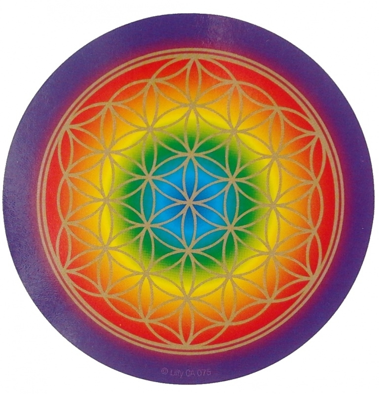 Flower of Life regenboog sticker 20,5 cm