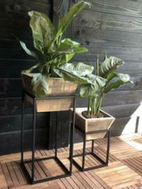 Stoer set plantenbakken!