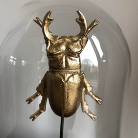 Stolp met insect