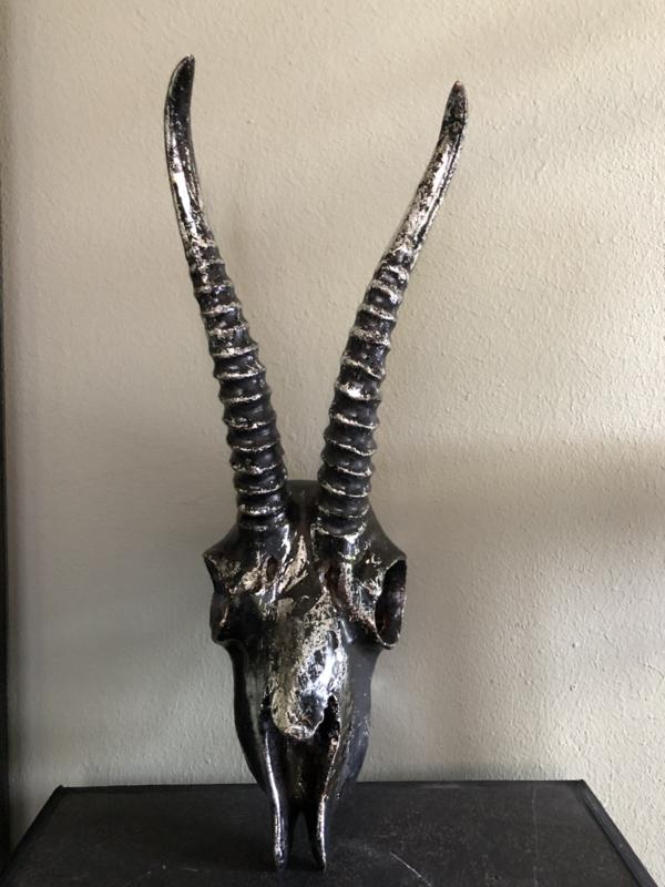 PTMD skull metallic