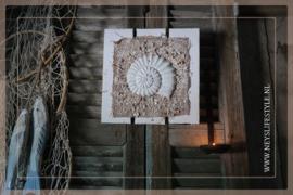 Wand decoratie | Fossil schelp