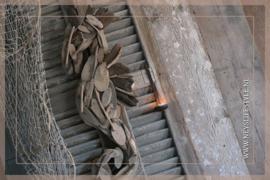 Sea horse driftwood
