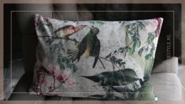Kussen fluweel 40 x 60 cm | vogels