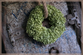 Hortensia krans  dried | 30 cm