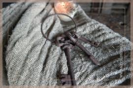 Bosje sleutels roest