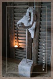 Steenbok op voet | grey