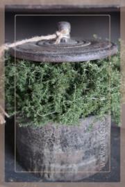 Asparagus krans   naturel 23 cm