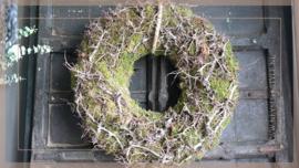 Bonsai mos krans   60 cm