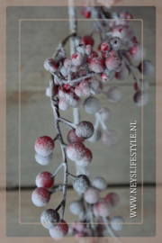 Guirlande berry snow   150 cm