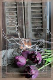Tulp in bloei kunst 43 cm | paars