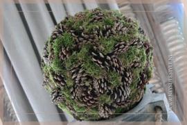 Bal pine moss | 35 cm