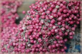 Pepperberry krans 30-35 cm