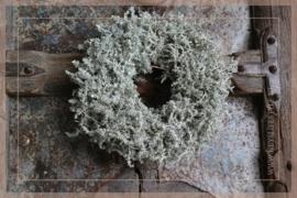 Wax krans Asparagus green 23 cm