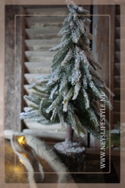 Kerstboom boomstam snow | M