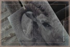 Kalkverf paneel | Ram mini