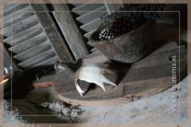 Houten plank ovaal   M