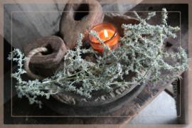 Asparagus wax bosje | olive green