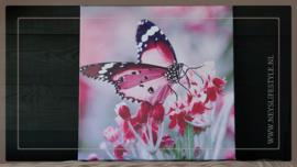 Canvas doek outdoor | Vlinder