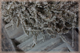 Krans Tataica  | 45 cm