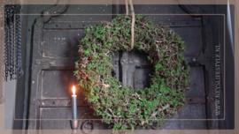 Krans Bonsai mos green   60 cm