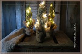 Set kerstbomen met jute zak |  S