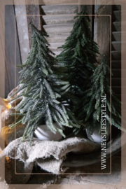 Kerstboom in pot Julias | L