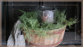 Asparagus kunt tak groen | 105 cm