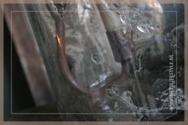 S hangkandelaar roest | XL