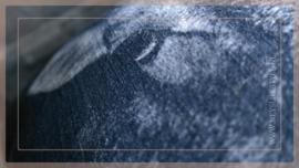 Kussen fluweel 60 x 40 cm | Schaap dark