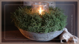 Krans Asparagus naturel |  40-50 cm