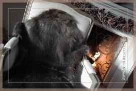 Vacht Raccoon bruin