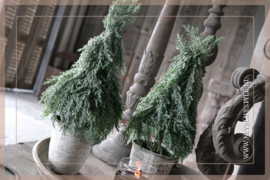 Kerstboom Ice in pot | 45 cm