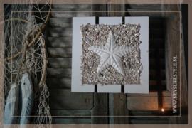 Wand decoratie | Zeester