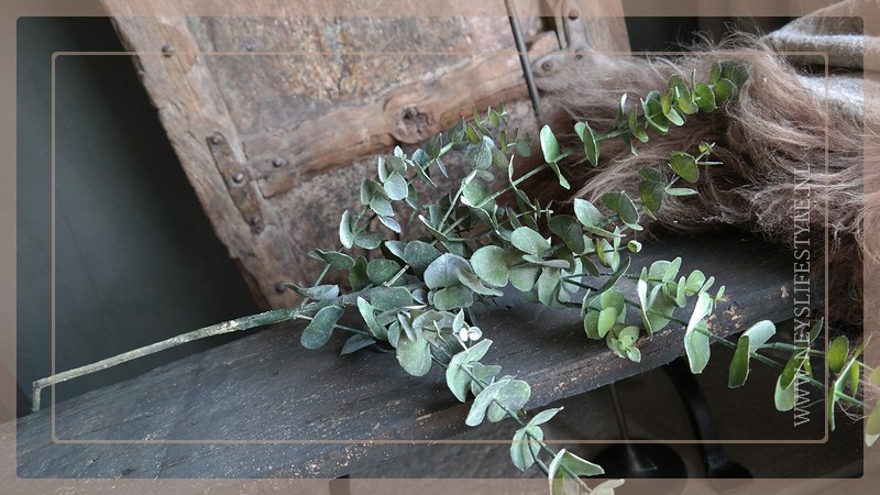 Eucalyptus tak | groen 93 cm