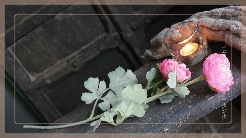 Ranunculus tak | donkerroze  55 cm