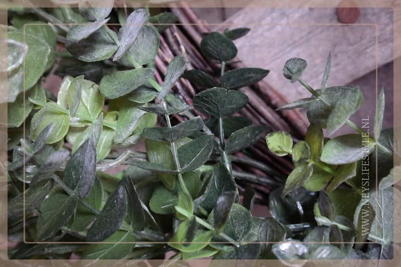 Eucalyptus krans kunst | 40 cm