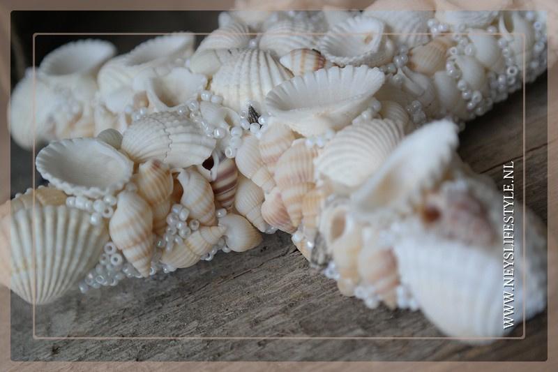 Shell star 17 cm