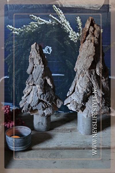 Tree wood bark | M