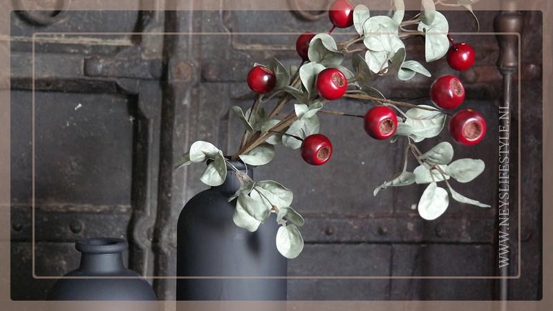 Bessen tak |  taxus rood 65 cm