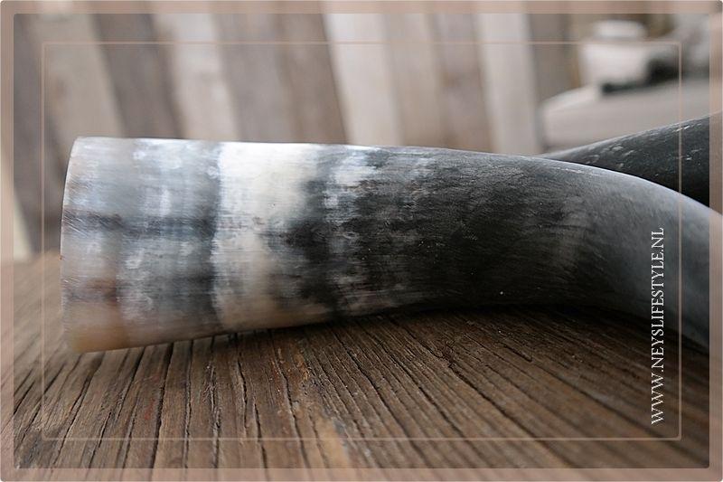 Cow horn matt 30cm