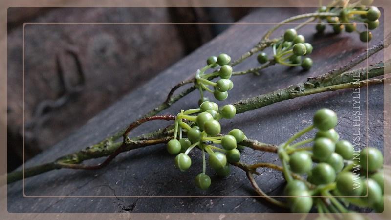 Bessen tak dik | groen 95 cm