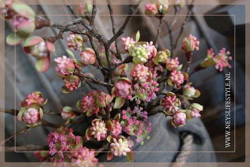 Esdoorn fruit tak | roze