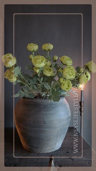 Ranunculus tak | groen 55 cm