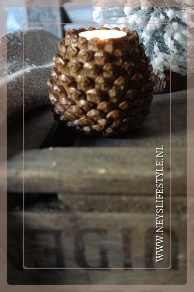 Waxinelichthouder Pinecone