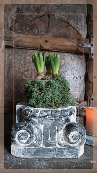 Houten poer greywash | 3